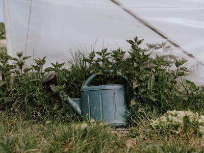 cyrille-morineaux-les-resistants-29
