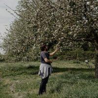 cyrille-morineaux-les-resistants-37