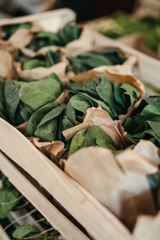 Recette de salade d'épinards, oignons nouveaux et pois chiches par Les Résistants